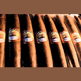 La Aurora Preferidos  Diamond  Cigars