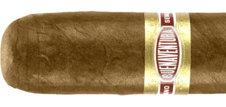 Curivari Buenaventura Pralines  P554  Cigars
